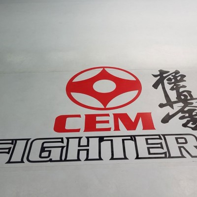 CEM FIGHTERS
